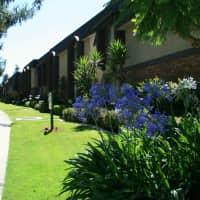 Pine Villa Apartments - Redlands, CA 92373