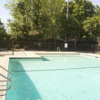 Shenandoah - Sacramento, CA 95831
