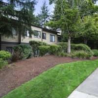 Park in Bellevue - Bellevue, WA 98004