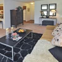 Mapletree Apartments - Southfield, MI 48034