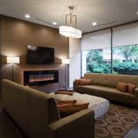 Hampton Plaza Apartments - Towson, MD 21286