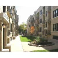Maple Court - Chicago, IL 60615