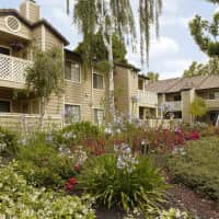 Amberwood Apartments - San Jose, CA 95131