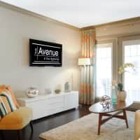 The Avenue - Louisville, KY 40204