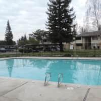 Polo Run - Stockton, CA 95210