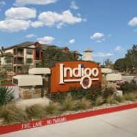 Indigo - Austin, TX 78717