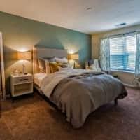 South Beach Apartments - Virginia Beach, VA 23451