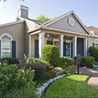 Richmond Green - Houston, TX 77042
