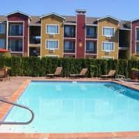 The Vintage Apartment Homes - Moses Lake, WA 98837