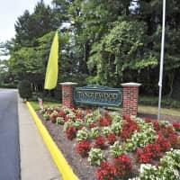 Tanglewood Apartments - Petersburg, VA 23805