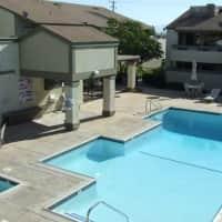 Park Terrace - Chino, CA 91710