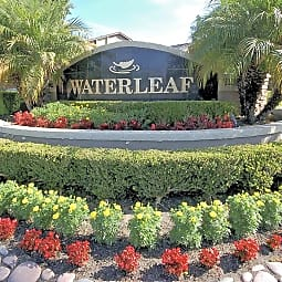 Waterleaf - Vista, California 92083