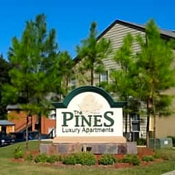 The Pines at Glen Pointe - Tallahassee, Florida 32303