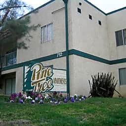Pinetree Apartments - San Jacinto, California 92583