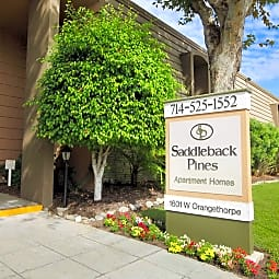 Saddleback Pines Apartment Homes - Fullerton, California 92833