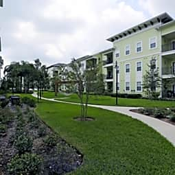 Camden Montague - Tampa, Florida 33635