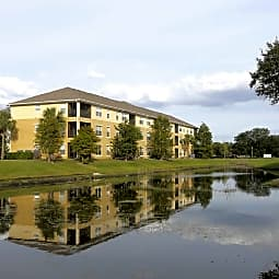 Sawgrass Creek Apartments - New Port Richey, Florida 34655