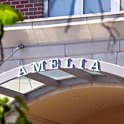 The Amelia - Arlington, Virginia 22203