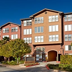 The Lofts at Albert Park - San Rafael, California 94901