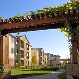 Pavona Apartments - San Jose, California 95112