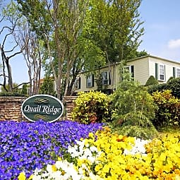 Quail Ridge Apartments - Raleigh, North Carolina 27609