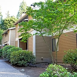 Cedar Terrace Apartments - Bellevue, Washington 98004