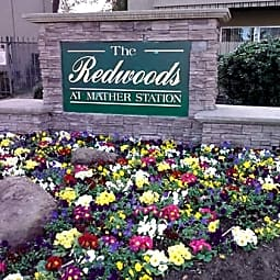 Redwoods at Mather Station - Rancho Cordova, California 95670