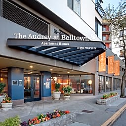 The Audrey at Belltown - Seattle, Washington 98121