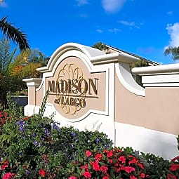 Madison at Largo - Largo, Florida 33770