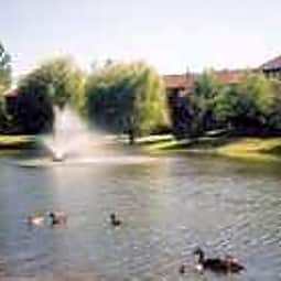 Grays Pointe Condominiums - Grayslake, Illinois 60030
