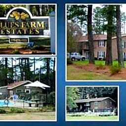 Blues Farm Estates - Laurinburg, North Carolina 28352