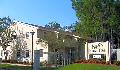 pine tree w idlewild ave tampa fl apartments for