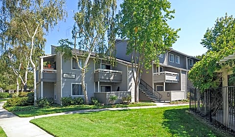 Briarwood Pasito Terrace Sunnyvale Ca Apartments For Rent
