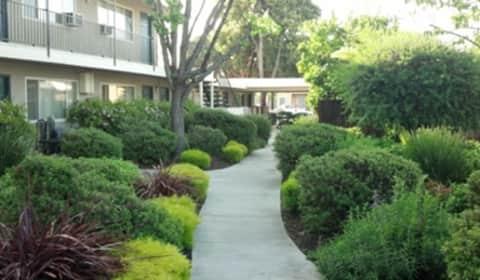 Sunny court apartments 1227 1337 sunny court san jose ca apartments for rent for Cheap 2 bedroom apartments in san jose