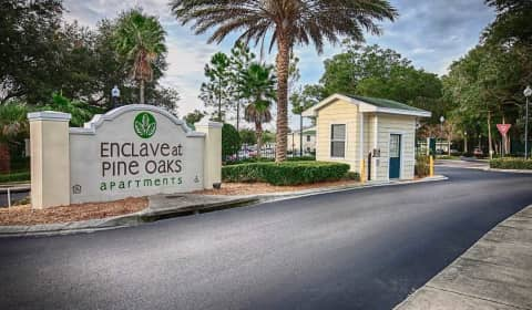 Enclave At Pine Oaks Harrison Place Drive Deland Fl Apartments For Rent
