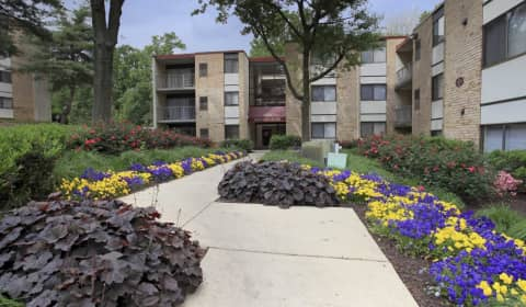 Windsor Court Tower Castle Boulevard Silver Spring Md Apartments For Rent