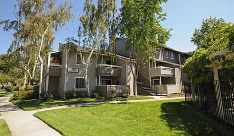 Briarwood pasito terrace sunnyvale ca apartments for for 180 pasito terrace sunnyvale ca 94086