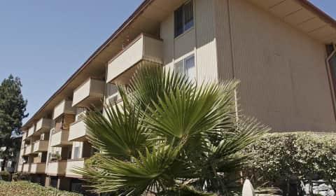 Palm lake apartments oak grove road concord ca apartments for rent for 2 bedroom apartments concord ca