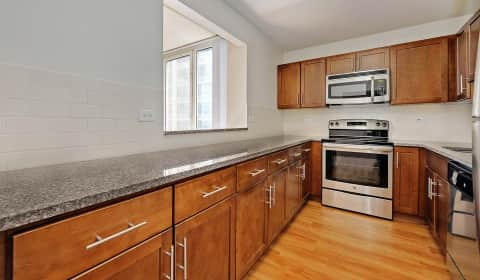 Dog Friendly Apartments Hyde Park Chicago