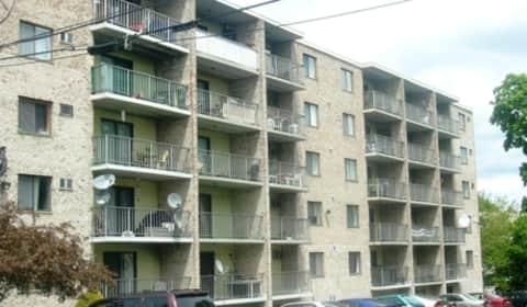 Parkwood Drive Apartments James Street Malden Ma Apartments For Rent