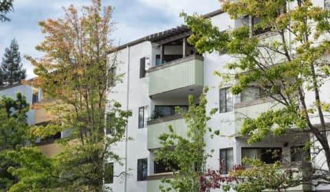 Creekwood City Center Drive Hayward Ca Apartments For Rent