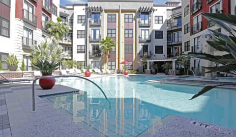 Fusion 1560 central avenue saint petersburg fl apartments for rent for One bedroom apartments in st petersburg fl