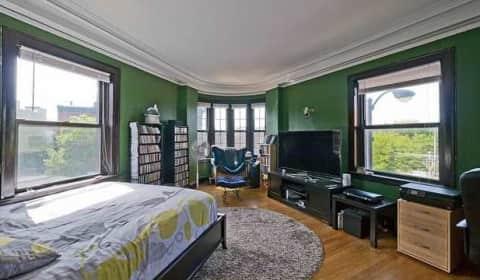 1157 W Diversey W Diversey Pkwy Chicago Il Apartments For Rent Rent Com 174