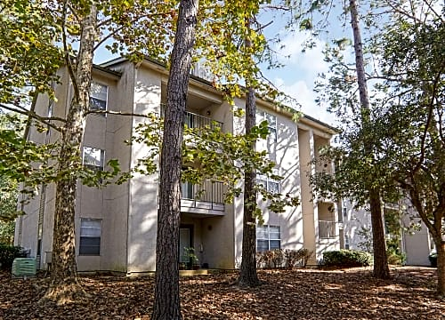 1 Bedroom Apartments Tallahee | 1 Bedroom Apartments In Royal Oaks Tallahassee Fl Rent Com