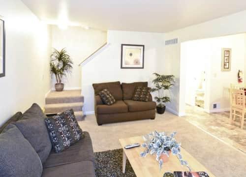taylor mi furnished apartments for rent 13 apartments rent com