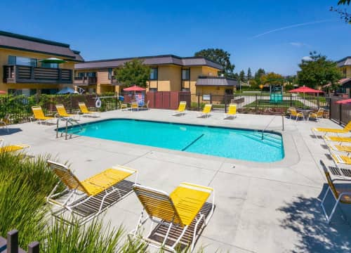 Swim Laps Or Relax at Both Pools
