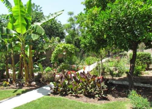 Cypress, CA Cheap Apartments for Rent - 1994 Apartments   Rent.com®