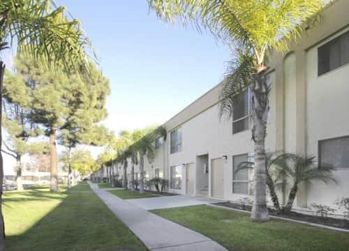 Castle Park Apartments for Rent   Chula Vista, CA   Rent.com®