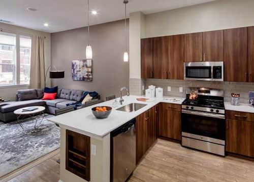 One Bedroom Kitchen/Living