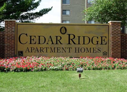 Richton Park, IL 3 Bedroom Apartments for Rent - 35 Apartments ...